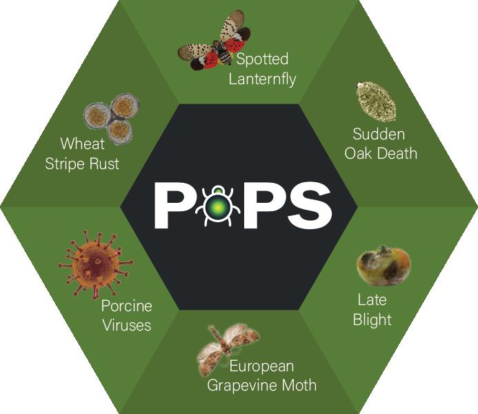 PoPS case studies