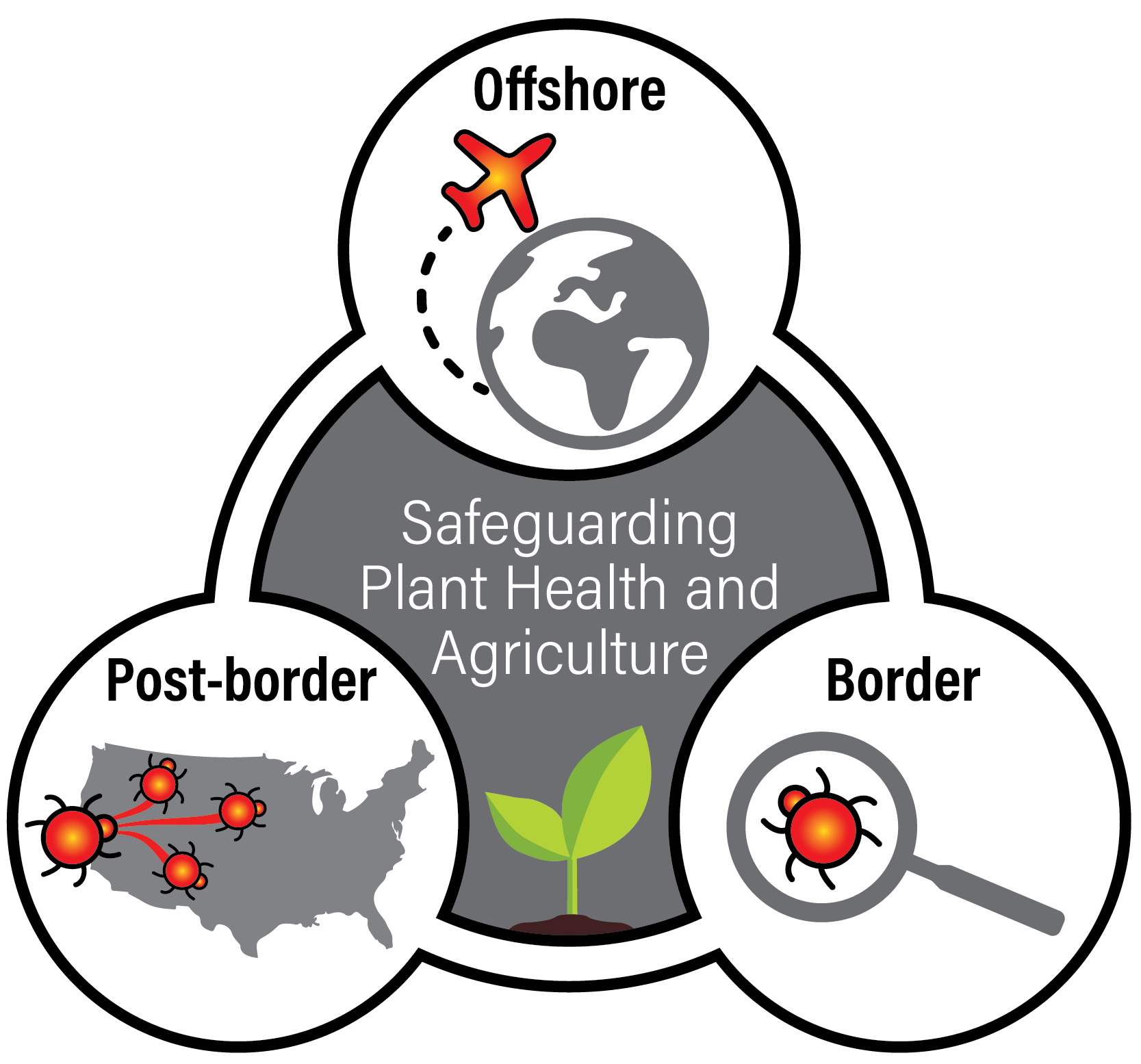 Safeguarding plant health and agriculture